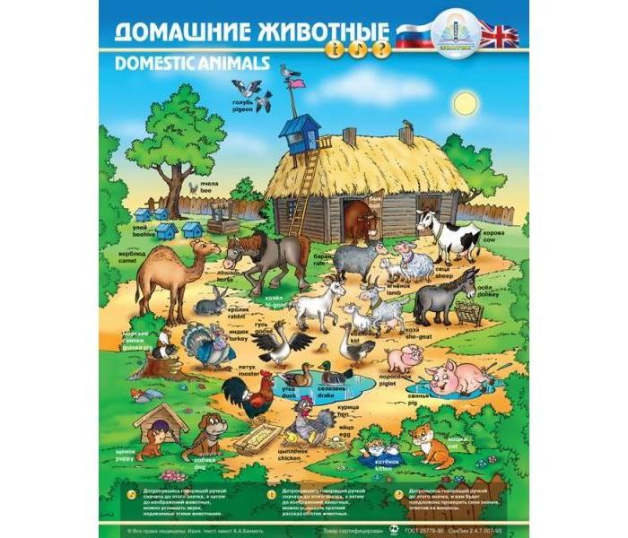 Развитие и школа , Обучающие плакаты Знаток Электронный звуковой плакат Домашние животные арт: 30183 -  Обучающие плакаты
