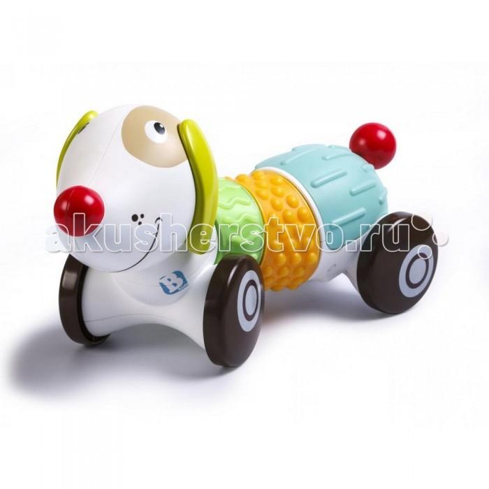 Интерактивная игрушка B kids Щенок SensoryЩенок SensoryB Kids Игрушка Щенок Sensory - это веселый, красочный щенок из серии Sensory от Bkids имеет множество развивающих функций для самых маленьких. Малыш будет весело играть и развиваться вместе с ним.   Особенности: Он может ездить вперед и назад, побуждая ребенка ползти или бежать за ним  На его туловище расположены текстурные панели, которые помогают развивать малышу тактильные ощущения Щенок умеет воспроизводить смешные звуки и играет веселую музыку  К тому же, с помощью приложения на смартфоне, родители могут управлять игрушкой на расстоянии<br>