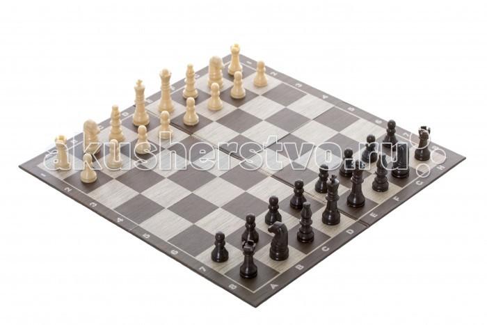Настольные игры Spin Master Настольная игра Шахматы классические 34х34 настольные игры spin master настольная игра spin master шахматы шашки магнитные дорожные