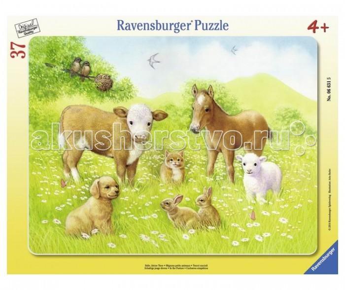 Пазлы Ravensburger Пазл На лугу 37 элементов пазлы ravensburger пазл коровы на лугу 15 элементов