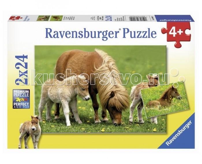 Пазлы Ravensburger Пазл Очаровательные пони 2х24 элементов