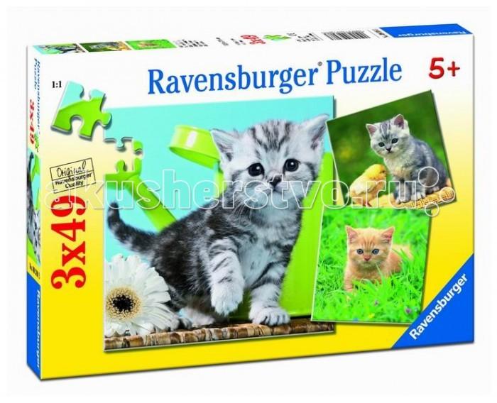 Пазлы Ravensburger Пазл Отважный котенок 3х49 элементов пазл 200 котенок 17154