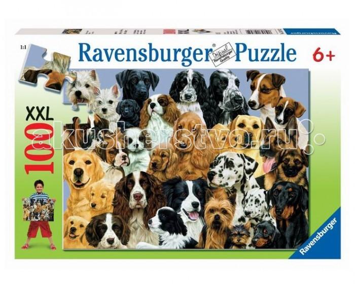 Пазлы Ravensburger Пазл Парад собак 100 элементов пазлы ravensburger пазл полиция 15 элементов