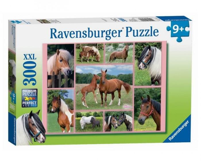 пазлы ravensburger пазл колизей 300 элементов Пазлы Ravensburger Пазл Галерея лошадей 300 элементов