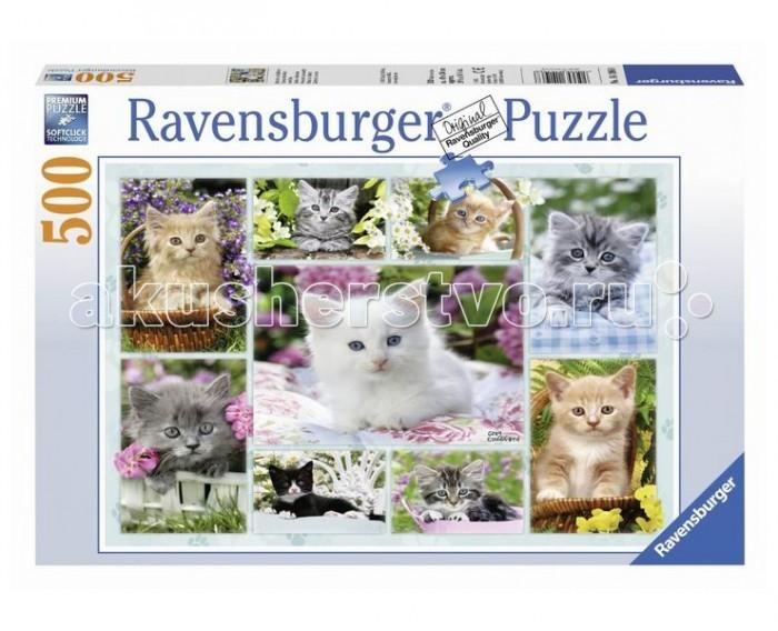 Пазлы Ravensburger Пазл Галерея котят 500 элементов пазлы origami пазл дм зайчик и волчонок 25 элементов