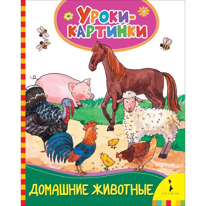 Обучающие книги Росмэн Домашние животные. Уроки-картинки обучающие книги росмэн книга супертехника
