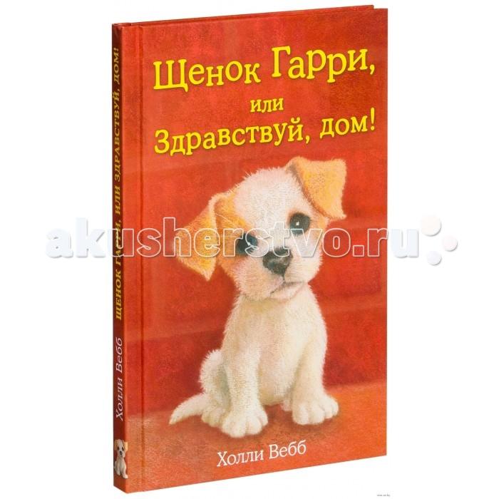 Художественные книги Эксмо Книга Щенок Гарри или Здравствуй дом