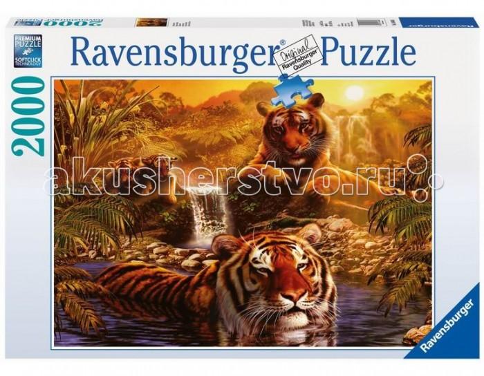 ravensburger-пазл-тигры-у-водопада-2000-элементов