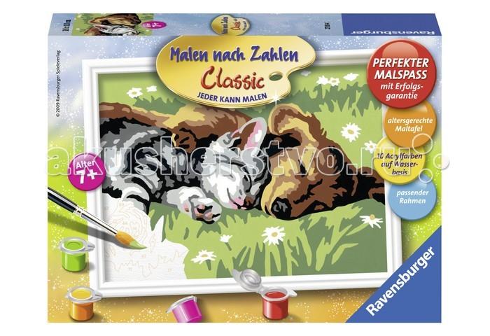 Творчество и хобби , Картины по номерам Ravensburger по номерам Сладкий сон арт: 35881 -  Картины по номерам