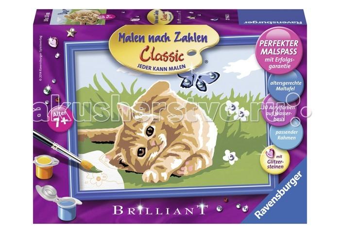Картины по номерам Ravensburger по номерам Котенок на траве наборы для рисования ravensburger раскраска по номерам спящий котенок