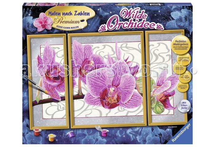 Ravensburger по номерам Орхидеяпо номерам ОрхидеяИспользуя раскраски по номерам, каждый желающий может почувствовать себя настоящим художником. Это является также прекрасным, удобным и практичным методом для самообучения. Каждый хороший художник умеет «чувствовать» цвет, правильно соединять краски для того, чтоб получить нужный оттенок. Начинающие не так хорошо разбираются в подобных тонкостях, поэтому раскраска по номерам на холсте дает шикарные возможности для обучения и получения важного опыта.  Набор для раскраски включает в себя всё самое необходимое: холст требуемой величины с готовым контуром, акриловые краски нужных оттенков, кисточку и контрольный лист. Контур рисунка уже заранее помечен, какой элемент необходимо раскрасить и каким именно цветом. Поэтому владельцу подобной раскраски не придется требовать от себя невозможного. Контрольный лист позволит получить в итоге именно такой рисунок, который был задуман автором.  В набор входят: фактурная картонная основа с пронумерованными контурами акриловые краски кисть контрольный лист подставка для красок в форме палитры рамка  Размер готовой работы: 50 х 80 см.<br>