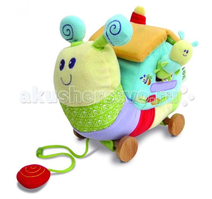Развивающая игрушка Little Bird Told Me Развивающий домик Гусеница