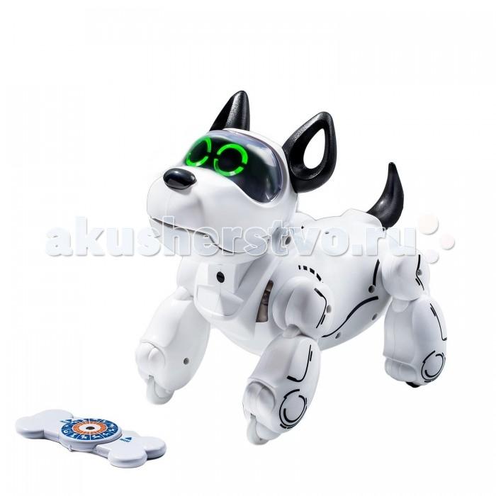 Интерактивная игрушка Silverlit Собака робот PupBoСобака робот PupBoИнтерактивная игрушка Silverlit Собака робот PupBo - это щенок-робот, который бегает и выполняет команды, как настоящая собака.   Особенности: У него нет колёс для передвижения, потому что этот робопёс бегает на четырех лапах Ему не нужен пульт управления, потому что собакой-роботом можно управлять с любого современного смартфона с Android (4.3 и выше) и iOS (8.0 и выше) Робопса можно дрессировать с помощью умной косточки, до 12 собственных команд Робопёс любит ласку! Благодаря сенсорам на голове робот-щенок проявляет различные эмоции, когда его гладят Непослушных щенков наказывают. Чтобы наказать робопса, нужно нажать ему на нос Робот двигается максимально похоже на настоящую собаку: он ходит, бегает, принимает более 10 разных положений тела, и может даже принести косточку.<br>