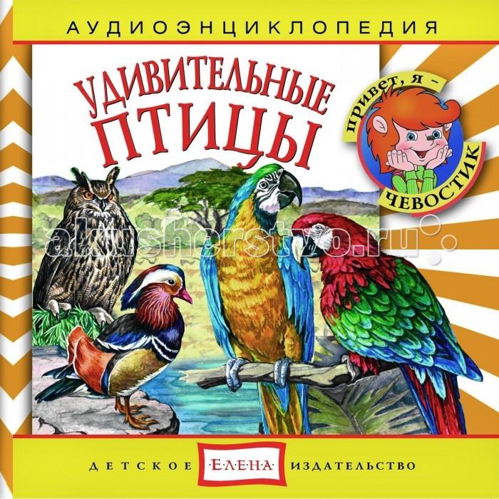 Энциклопедии Детское издательство Елена Аудиоэнциклопедия Удивительные птицы