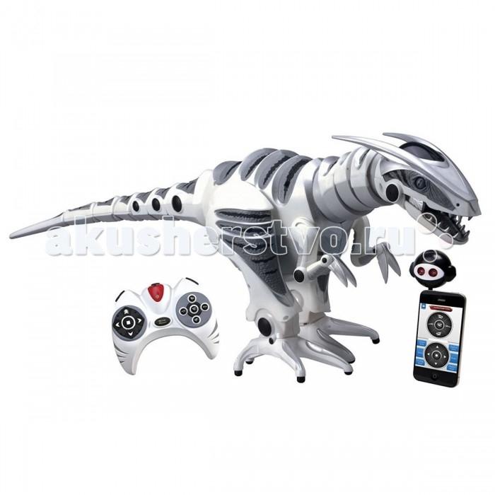 Wowwee Робот РоборапторРобот РоборапторИнтерактивная игрушка Wowwee Робот Робораптор возвращается на землю через миллионы лет. Этот хищник бегает на двух лапах, демонстрирует невероятно реалистичные движения тела, головы и хвоста, а также оснащен системой инфракрасного видения, датчиками звука и прикосновения для полного взаимодействия с окружающей средой.  Робораптор имеет три основных режима, которые обуславливают его поведение: режим «Охота», «Охрана территории» и «Игра». В зависимости от выбранного режима Roboraptor X может относиться к окружающим как к друзьям или как к своему обеду.  Датчики прикосновения в хвосте, на подбородке и во рту позволяют Робораптору реагировать на прикосновение, система инфракрасного видения обнаруживает объекты на пути Робораптора, позволяя ему обходить препятствия.  А еще Робораптором Х можно управлять с мобильного устройства. При управлении с мобильного устройства вы сможете напрямую контролировать движения робота, его звуковые эффекты и многое другое. Чтобы запустить управление с мобильного устройства, необходимо вставить инфракрасный порт в виде головы робота в разъем для наушников вашего устройства и загрузить бесплатное приложение.  Характеристики: Световые эффекты: есть Звуковые эффекты: есть Батарейки: 3 x ААА - пульт, 6 x АА - робот (в комплект не входят) Возможность управления с мобильного устройства: есть Размеры: 82 х 29 х 30 см Возраст: от 8 лет  Комплектация: Робот Пульт Инфракрасный порт в виде головы робота для управления с мобильного устройства Инструкция<br>