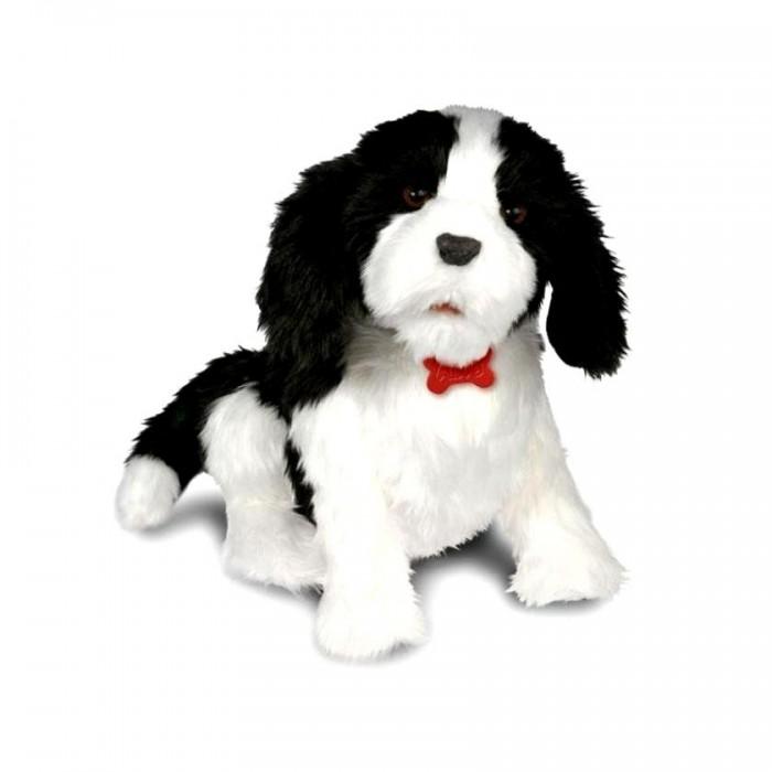 Интерактивная игрушка Wowwee Робот-собака БеллаРобот-собака БеллаИнтерактивная игрушка Wowwee Робот-собака Белла: играйте с ней и она будет отвечать Вам весёлыми звуками и забавными движениями!  Игрушка умеет различать различные типы взаимодействия с ней, к примеру поглаживание и объятия, щекотка или похлопывание по голове , на всё это робот собака Белла, будет реагировать и отвечать по разному. Белла не только реагирует на голосовые команды, но и различает с какой громкостью они были произнесены и соответственно реагирует на команды различным образом.  Игрушка Белла по размеру похожа на настоящего щенка и умеет издавать 18 различных, характерных для собачки звуков. У игрушки анимированные глаза, рот, уши, и хвост.  Рекомендованный возраст: от 3-х лет В комплект входят: ошейник и расческа.<br>