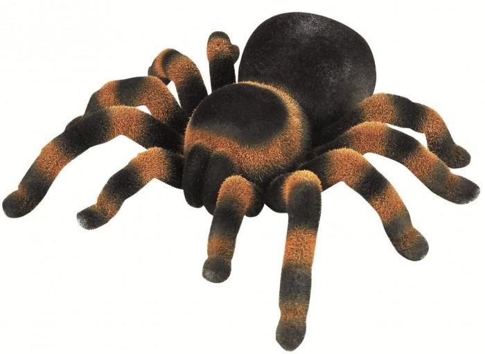 Интерактивная игрушка Edu-Toys Паук радиоуправляемыйПаук радиоуправляемыйEdu-Toys Паук радиоуправляемый –тарантул, изготовленный в натуральную величину. Он выглядит как настоящий тарантул и что самое интересное – передвигается как самый настоящий паук!   Паук может двигаться в любую сторону по любой гладкой поверхности и способен преодолеть расстояние до 8 метров.   Дистанционное управление адаптировано к детской руке. Игрушка рассчитана на детишек, которые любят подшучивать над своими друзьями, пугая их.<br>
