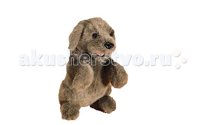 Мягкая игрушка Folkmanis Собака сидящая 38 смСобака сидящая 38 смМягкая игрушка Folkmanis Собака сидящая 38 см - мягкая игрушка на руку из коллекции замечательных мягких игрушек - марионеток. Дизайн игрушек этой марки признан уникальным. Собака выглядит очень реалистично. Рот у собаки подвижен.  Игрушка создана из экологически чистых материалов.  Возможна бережная ручная стирка.<br>