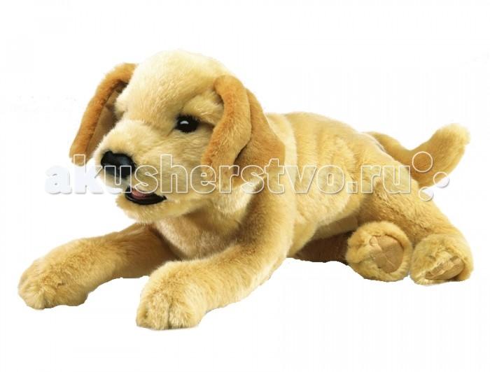 Мягкие игрушки Folkmanis Щенок лабрадора желтый 43 см купить шоколадного щенка лабрадора в тюмени