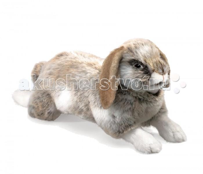Мягкие игрушки Folkmanis Голландский карликовый кролик 43 см фигурка карликовый козел schleich фигурка карликовый козел