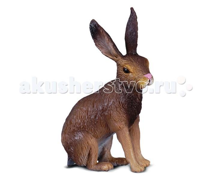 Игровые фигурки Collecta Фигурка Заяц-русак 6 см заржицкая э заяц и волшебный барабан