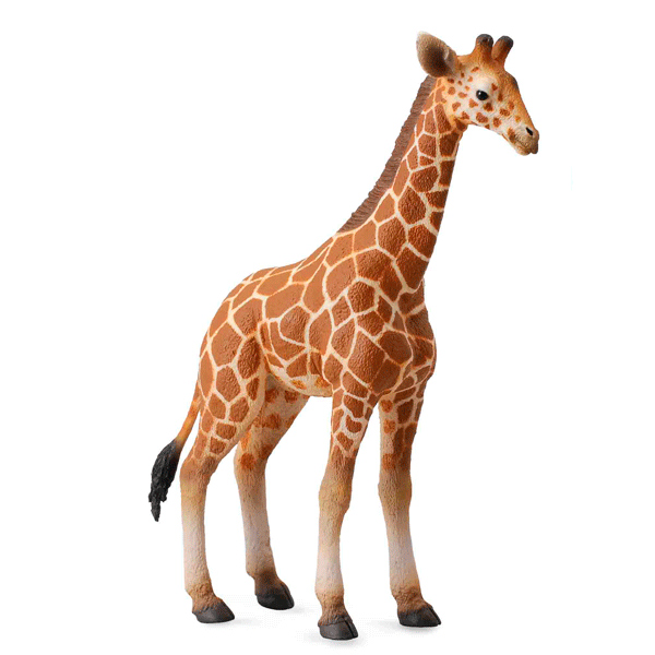 Игровые фигурки Gulliver Collecta Фигурка Жеребенок сетчатого жирафа 12 см игровые фигурки gulliver collecta фигурка горбатый кит xl