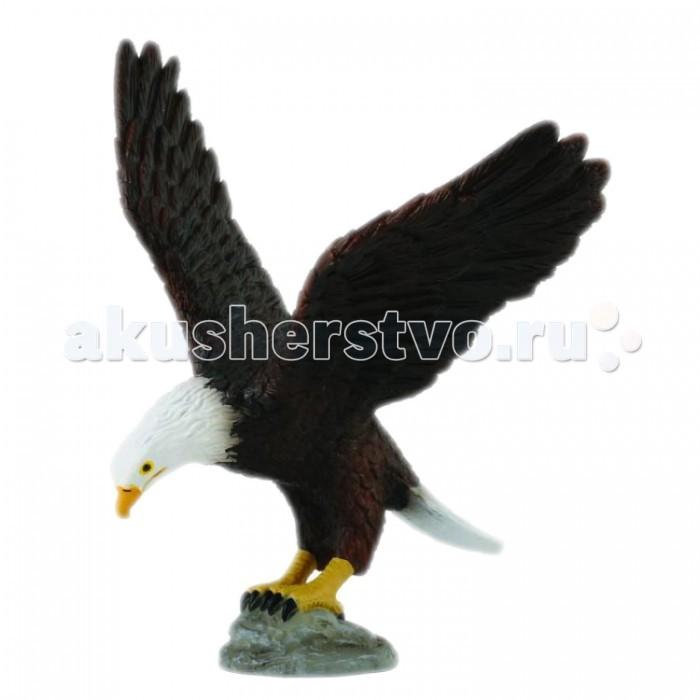 Игровые фигурки Gulliver Collecta Фигурка Американский лысый орел игровые фигурки gulliver collecta фигурка горбатый кит xl