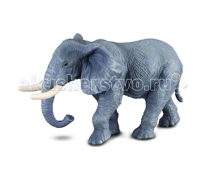 Игровые фигурки Gulliver Collecta Фигурка Африканский слон 14 см игровые фигурки gulliver collecta фигурка горбатый кит xl