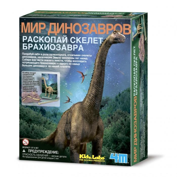 Наборы для творчества 4М Набор Скелет Брахиозавра 00-03237 скелет брахиозавра 4m