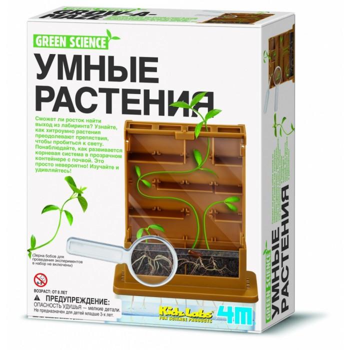 Наборы для творчества 4М Умные растения 00-03352 наборы для творчества 4м фигурки из формочки принцесса 00 03528