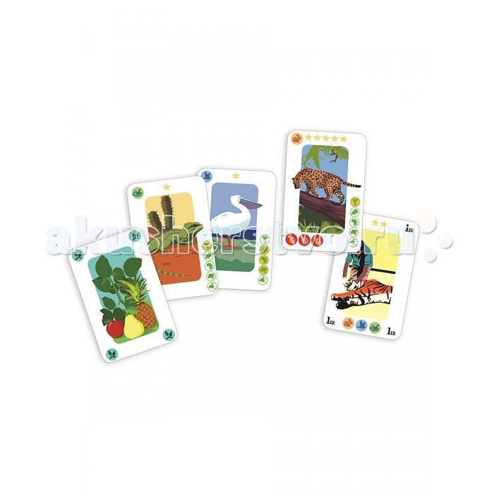 Djeco Детская настольная карточная игра Зоопарк
