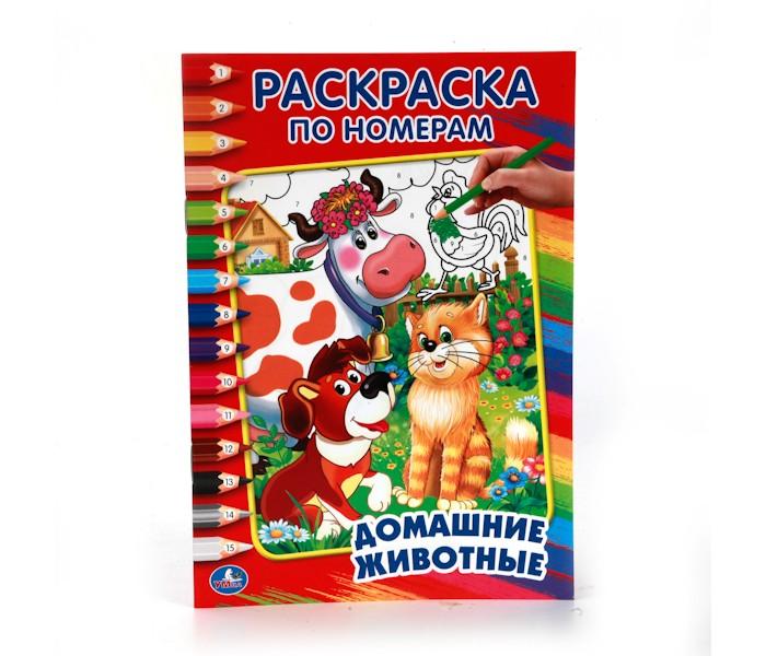 Раскраски Умка по номерам Домашние животные маленькая наборы для рисования цветной раскраски по номерам сова голова