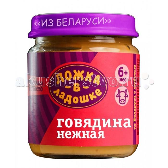 Пюре Ложка в ладошке Пюре Говядина нежная с 6 мес. 100 г