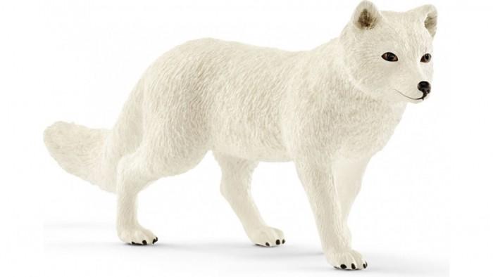 Игровые фигурки Schleich Игровая фигурка Песец фигурки игрушки schleich белый медвежонок