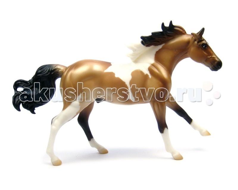 Breyer Лошадь пейнт буланыйЛошадь пейнт буланыйВсе лошади серии Classic являются игровыми моделями. Данная серия познакомит ребенка с многообразием лошадиных пород и мастей.   На данный момент продукты компании Breyer являются самыми реалистичными копиями лошадей благодаря точности линий, проработке мелких деталей и ручной росписи. Все это позволяет сделать каждую лошадь особенной и абсолютно не похожей на других.  Модель лошади Пейнт буланый познакомит ребенка с интересным американским типом лошадей-пейнтом (англ. paint- расписной, раскрашенный). У американцев есть два слова для именования лошадей пегой масти - пейнт и пинто, Это две группы, два типа, на которых они делят всех пегих, ведется даже регистрация и племенные книги. Но если пинто - это практически любая пегая лошадь, то к пейнтам традиционно относятся только лошади породы квотерхорс (или четвертьмильная) и чистокровные. Все прочие - пинто. Пегая масть предпогает белые пятна разных форм и размеров, хаотично разбросанные по основному цвету. Основная масть может быть любая- начиная от простых вариантов типа гнедой и рыжей и заканчивая более экзотическими соловой или буланой. Модель этой лошади как раз булано-пегая, т.е. по буланой масти (песочное тело, черные грива и хвост и ноги до колена) раскиданы белые пятна. Пегие лошади обычно смотрятся очень ярко и нарядно, особенно в сочетании с необычной основной мастью, в чем можно убедиться, глядя на эту модель.   Рекомендовано детям от 4 лет.   Масштаб 1:12  Размеры лошади ДхВ - 23 х 15 см   Лошадь упакована в красивую коробку. Изготовлена из высококачественного материала, абсолютно безопасна в использовании, рекомендована детям от 4-х лет.<br>