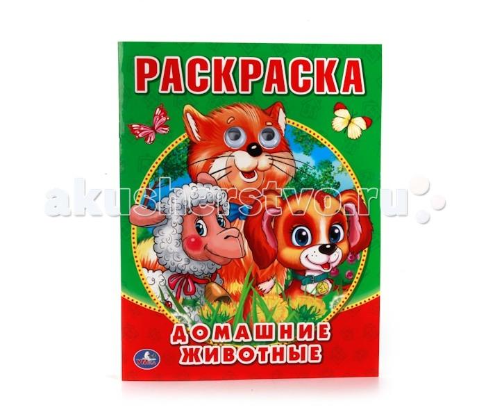 Раскраски Умка с глазками Домашние животные умка книга для ванной домашние животные простоквашино