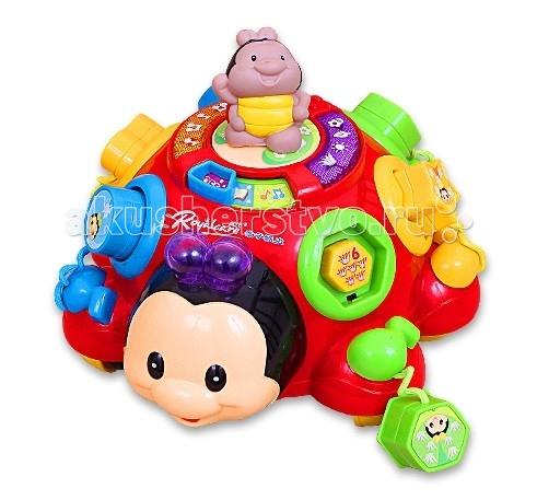 Каталка-игрушка Royalcare Сортер Жук
