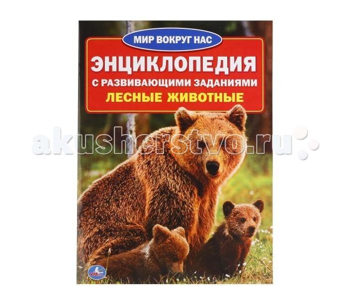 Энциклопедии Умка Энциклопедия Лесные животные