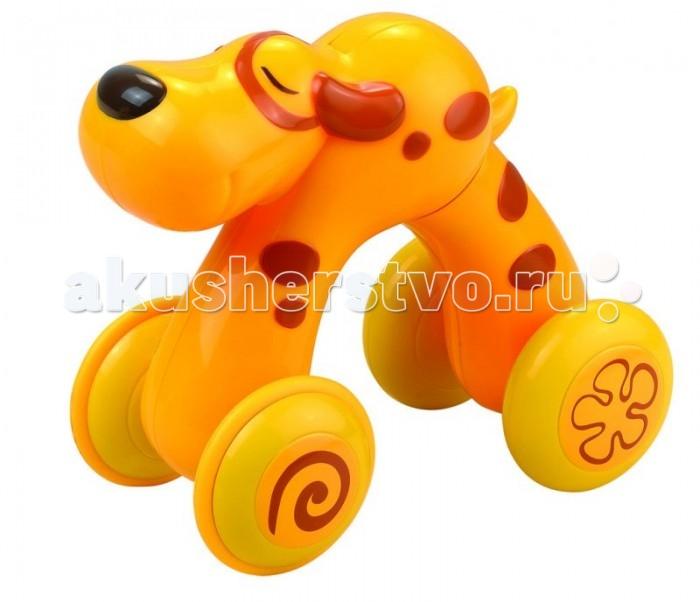 Каталки-игрушки Happy Kid Toy Щенок Нажми и поедет развивающие игрушки happy kid toy пирамидка матрешка курочка несушка