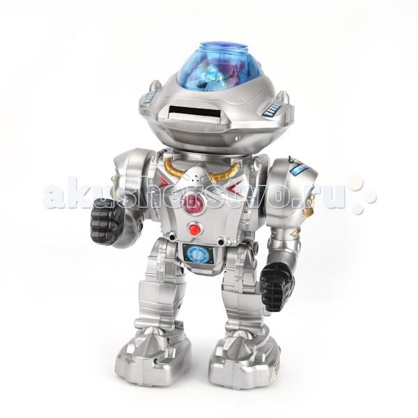 Интерактивная игрушка Играем вместе Робот A224-H05056-R