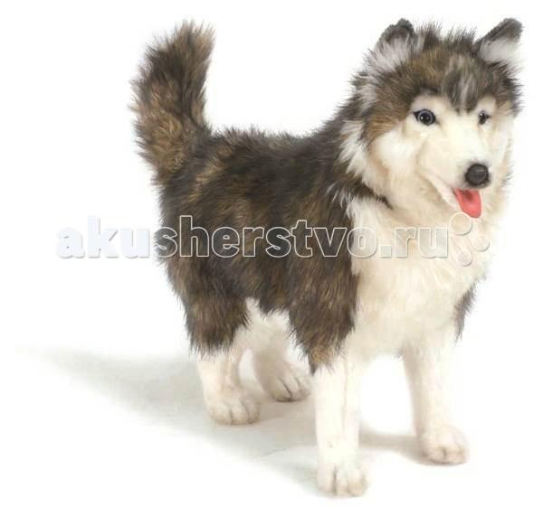 Мягкие игрушки Hansa Собака породы Сибирский Хаски 40 см электростатический сепаратор отделение угля от породы производство россия