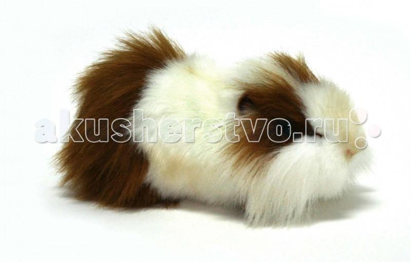 Купить Мягкие игрушки, Мягкая игрушка Hansa Морская свинка бело-рыжая 30 см