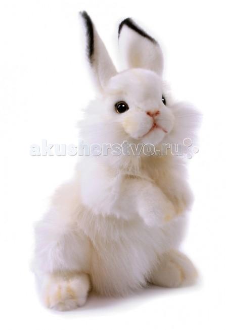 Мягкая игрушка Hansa Белый кролик 32 смБелый кролик 32 смБелый кролик, 32 см.  Игрушки Ханса изготовлены из искусственного меха очень приятного на ощупь, внутри имеют титановый каркас. Наличие каркаса позволяет изменять положение лап и туловища, а также поворачивать голову. Игрушки полностью копируют оригинал и могут быть выполнены в натуральную величину. На крупно габаритных игрушках ослик, лошадка и проч., размером от 1м можно сидеть верхом.   Благодаря прочному каркасу, они выдерживают вес до 65-70кг. Компания Hansa была основана в 1972 году на Филиппинах мистером Хансом Акстельмом и в прошлом году отметила свой 40 летний юбилей. 7 мировыч обществ охраны природы признали мягкие игрушки фирмы Ханса самыми натуралистичными моделями животных .  Мягкие игрушки Ханса: абсолютно реалистичные жирафы, слоны, коалы и медведи, изготовленные из экологически чистых материалов, сертифицированные как детские игрушки, могут так же стать великолепным украшением любого интерьера – от оформления комнаты до торгового зала, офиса, ресторана, шоу-программы или праздничной вечеринки.  Игрушки HANSA идеальны для модных интерьеров в африканском или японском стиле. Благодаря своей реалистичности игрушки Hansa имеют огромное природоохранное значение - они позволяют любоваться дикими животными, сохраняя им жизнь. Отдельная линия анимированных декоративных композиций дает возможность создавать эффектные экспозиции для выставок, презентаций, витрин и проч. Мягкие анимированные игрушки нередко делаются на заказ, для конкретных интерьеров и событий. В ассортименте hansa игрушки более 3000 наименований: от райских птичек и мышей 5 см до слонов и жирафов 4,5 м.<br>