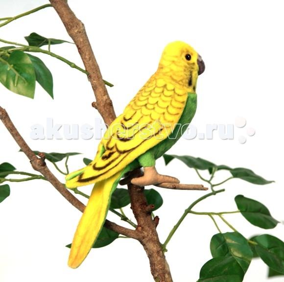 Картинка для Мягкая игрушка Hansa Волнистый попугайчик зеленый 15 см
