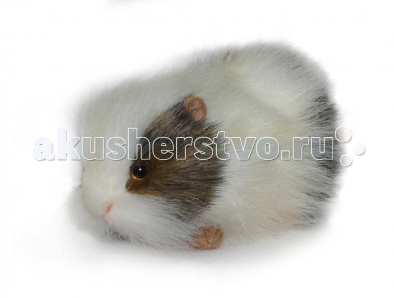 Мягкие игрушки Hansa Морская свинка белая 20 см