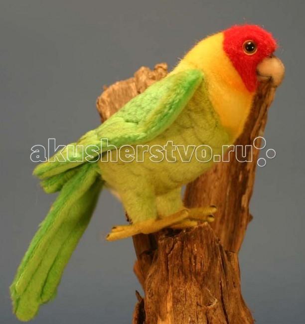 Мягкие игрушки Hansa Каролинский попугай 17 см мягкие игрушки hansa каролинский попугай 17 см