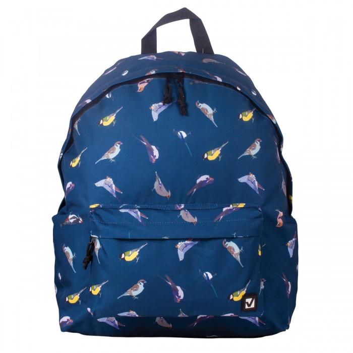 Купить Brauberg Рюкзак Птицы в интернет магазине. Цены, фото, описания, характеристики, отзывы, обзоры