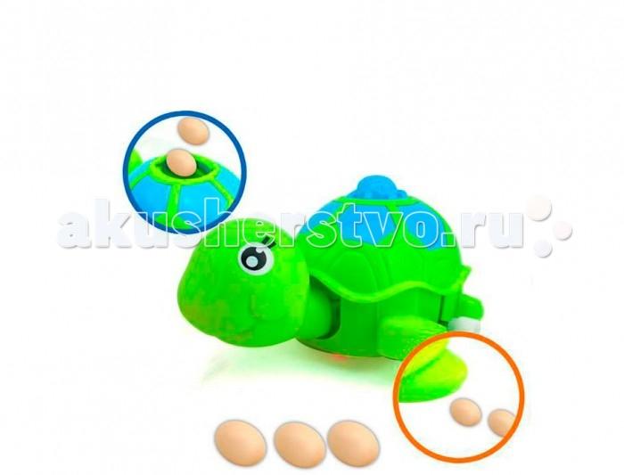 Развивающие игрушки S+S Toys Заводная Черепашка игрушки для ванны умка заводная игрушка
