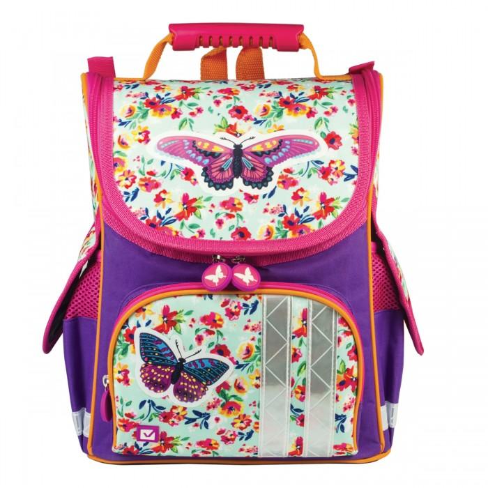 Развитие и школа , Школьные рюкзаки Brauberg Ранец Бабочка в цветах арт: 529056 -  Школьные рюкзаки