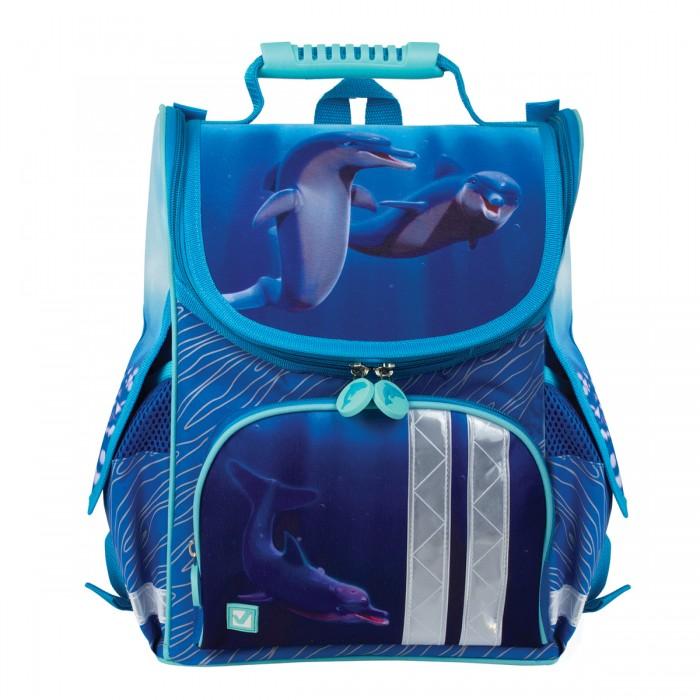 Купить Школьные рюкзаки, Brauberg Ранец Дельфин 17 л